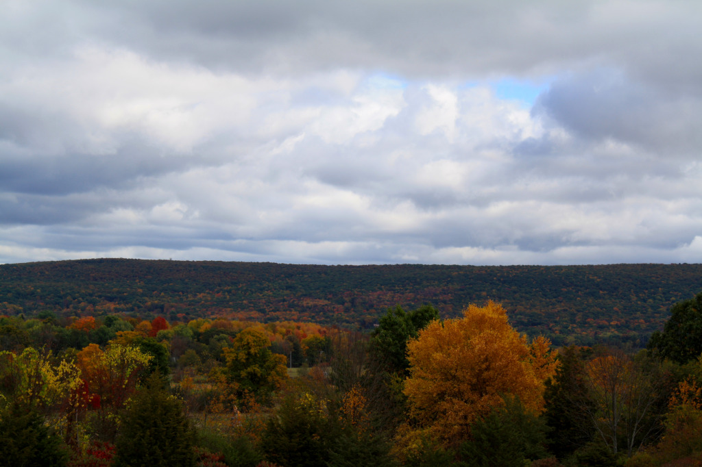 Hudson River Valley, Fall Foilage, Apple Picking, Upstate NY, 22