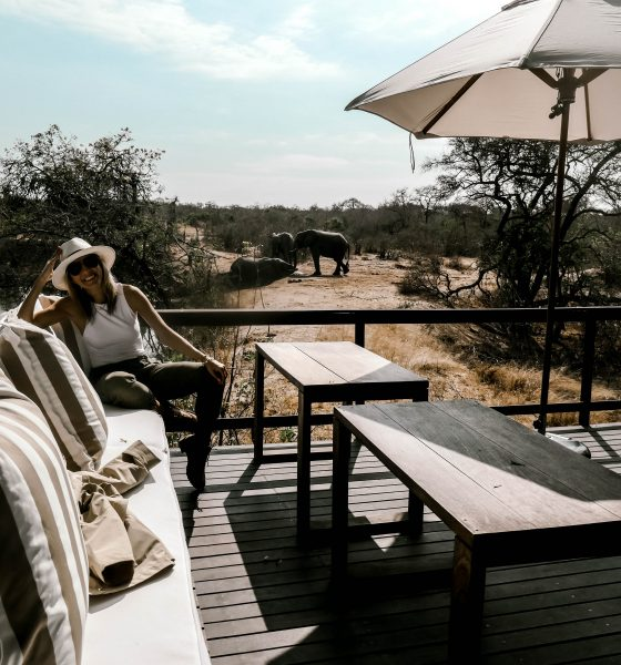 The African Safari Travel Guide: Royal Malewane Safari in Kruger
